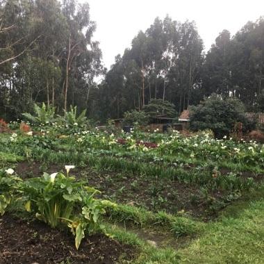 Les jardins de la ferme