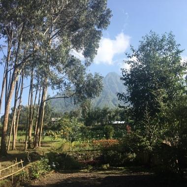 Les sommets des Virunga tout proches
