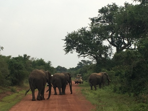 Rwanda 17a
