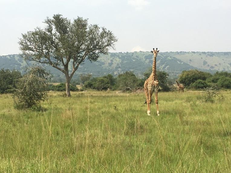 Rwanda 19a