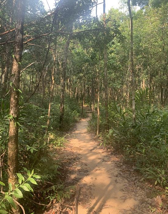 Cambodge 33