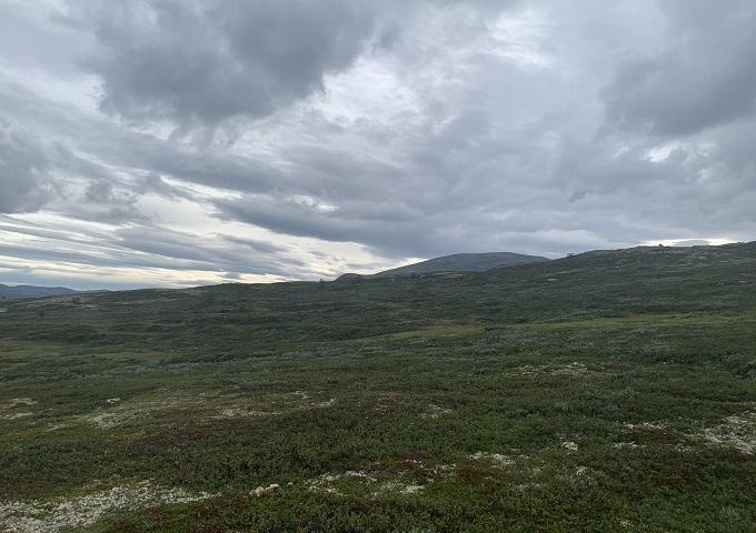 Norvege 32b