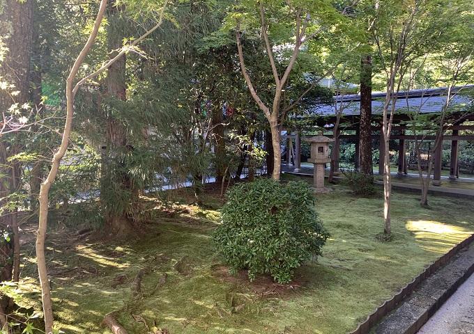 Japon 16d